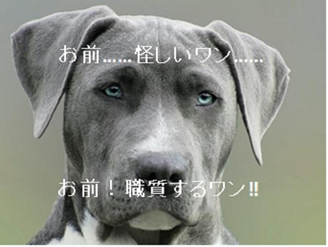 f:id:akirasan_comedy:20200524200035j:plain