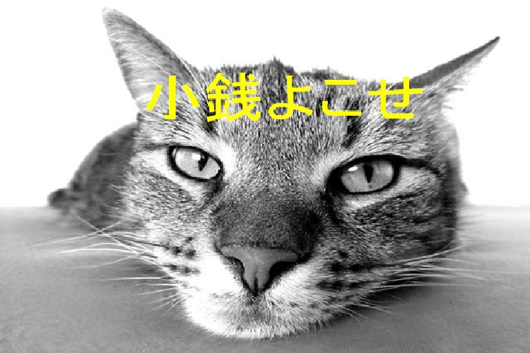 f:id:akirasan_comedy:20200614224800j:plain