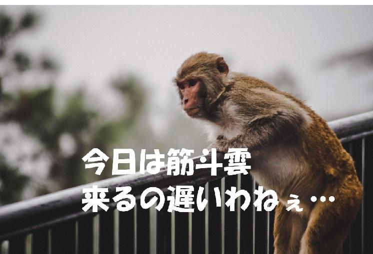 f:id:akirasan_comedy:20200618092706j:plain