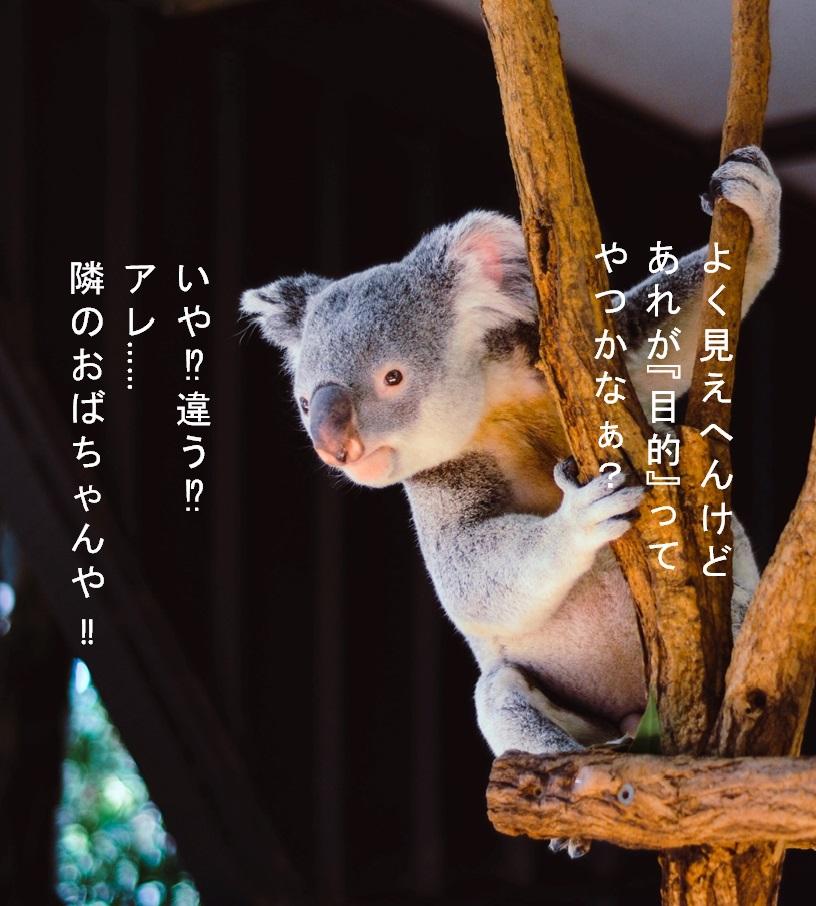 f:id:akirasan_comedy:20200621221854j:plain