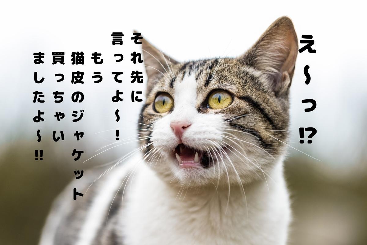 f:id:akirasan_comedy:20210309190235j:plain