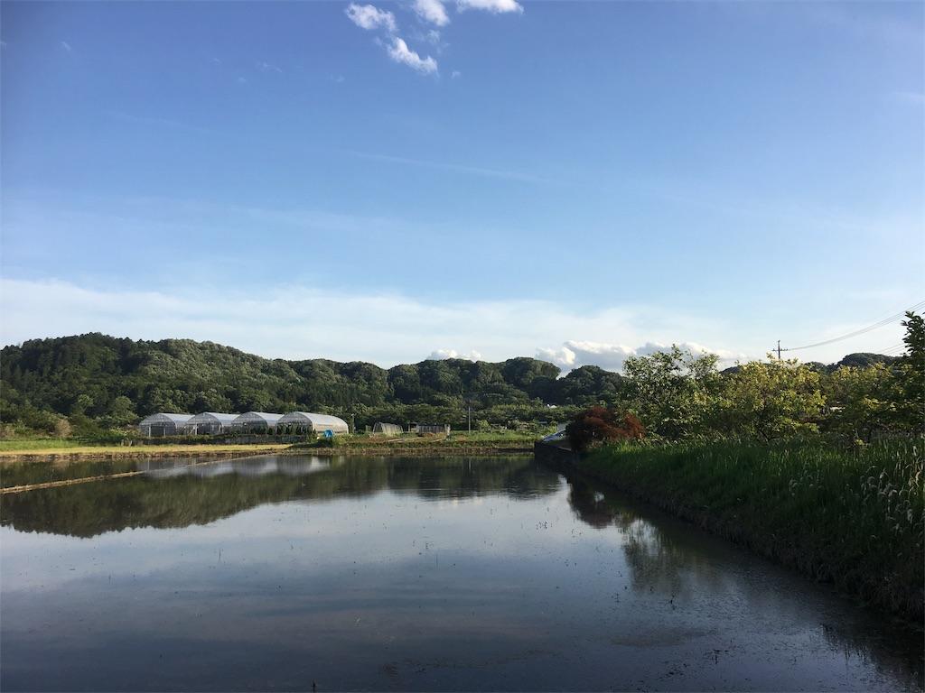 f:id:akiruno_life:20170718073613j:image