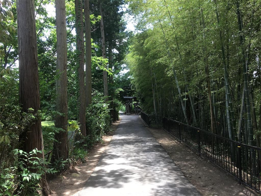 f:id:akiruno_life:20170718073651j:image