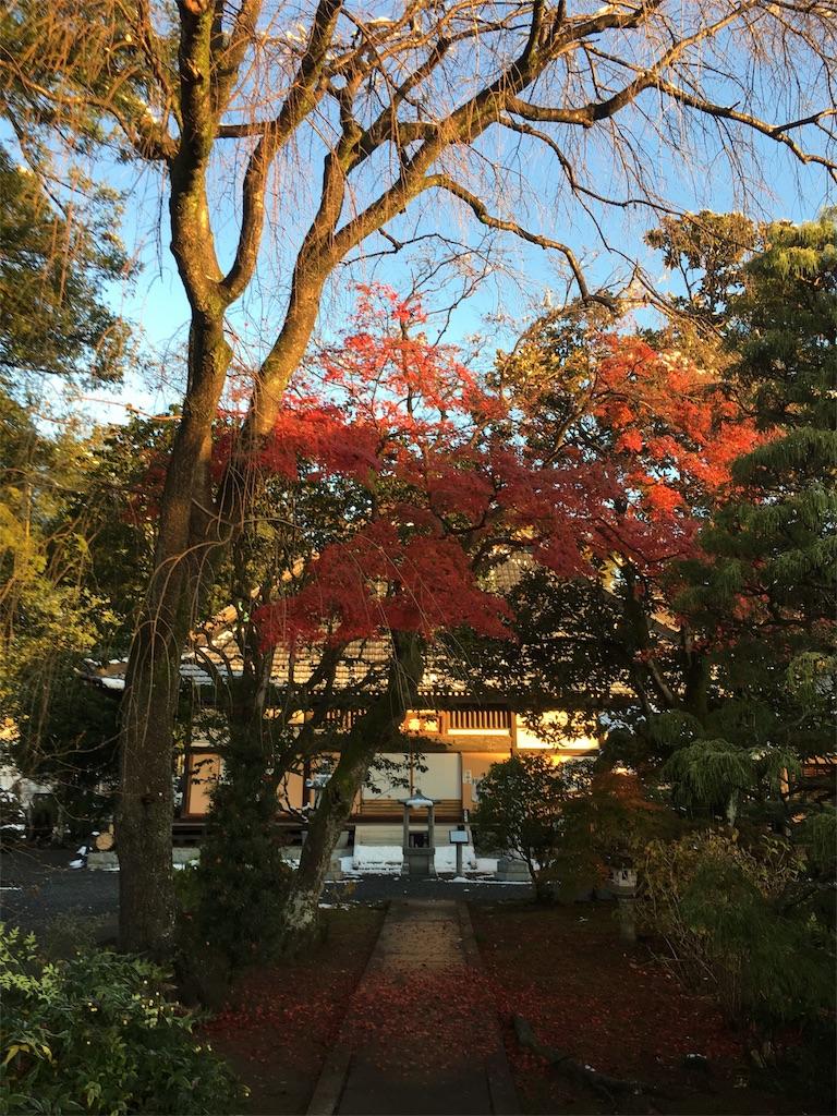 f:id:akiruno_life:20171009011924j:image