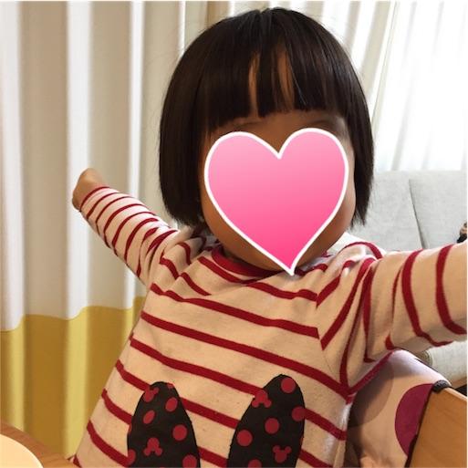 f:id:akisan01:20170130082641j:plain