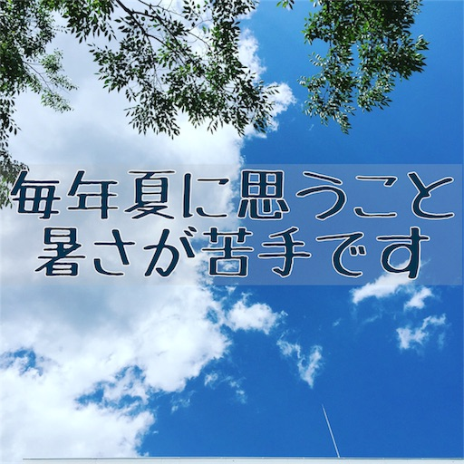 f:id:akisan01:20170803072635j:image