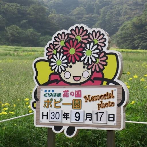 f:id:akisan01:20180920135145j:image
