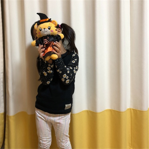 f:id:akisan01:20181020121811j:image