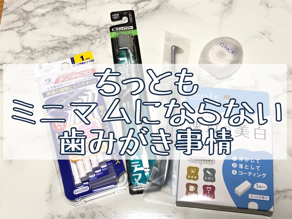 f:id:akisan01:20190311223911j:image