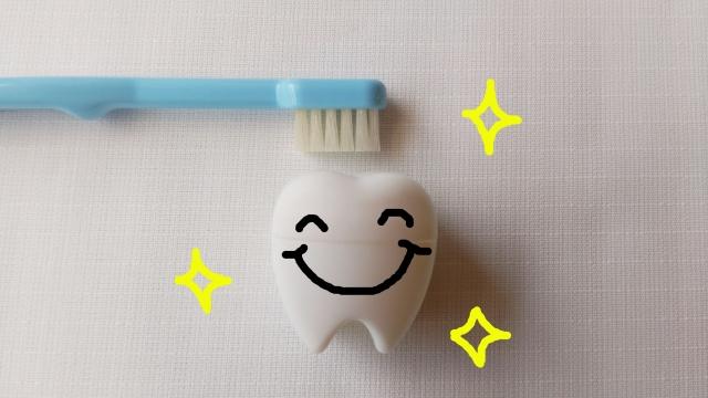 歯ブラシと歯の写真