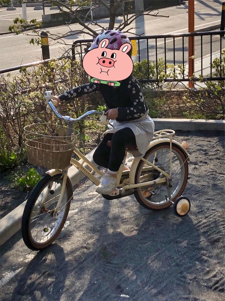 f:id:akisan01:20190416121838j:image