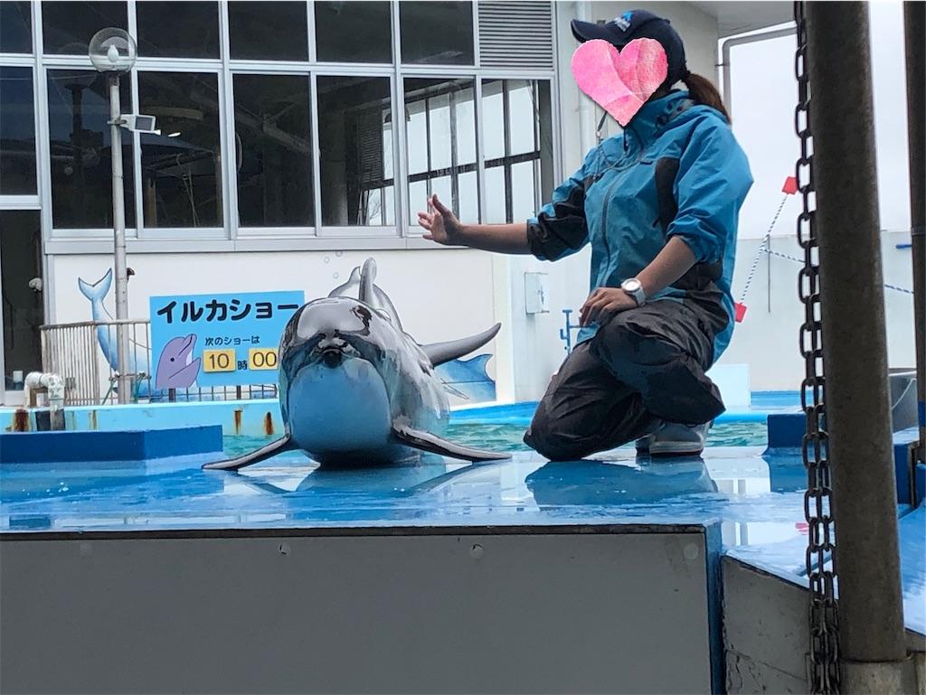 f:id:akisan01:20190502220229j:image