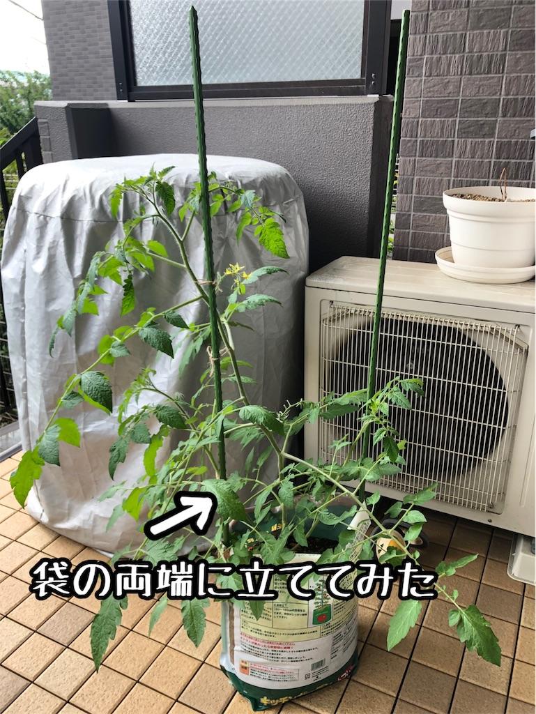 f:id:akisan01:20190619091654j:image