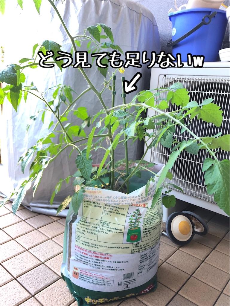 f:id:akisan01:20190619091703j:image