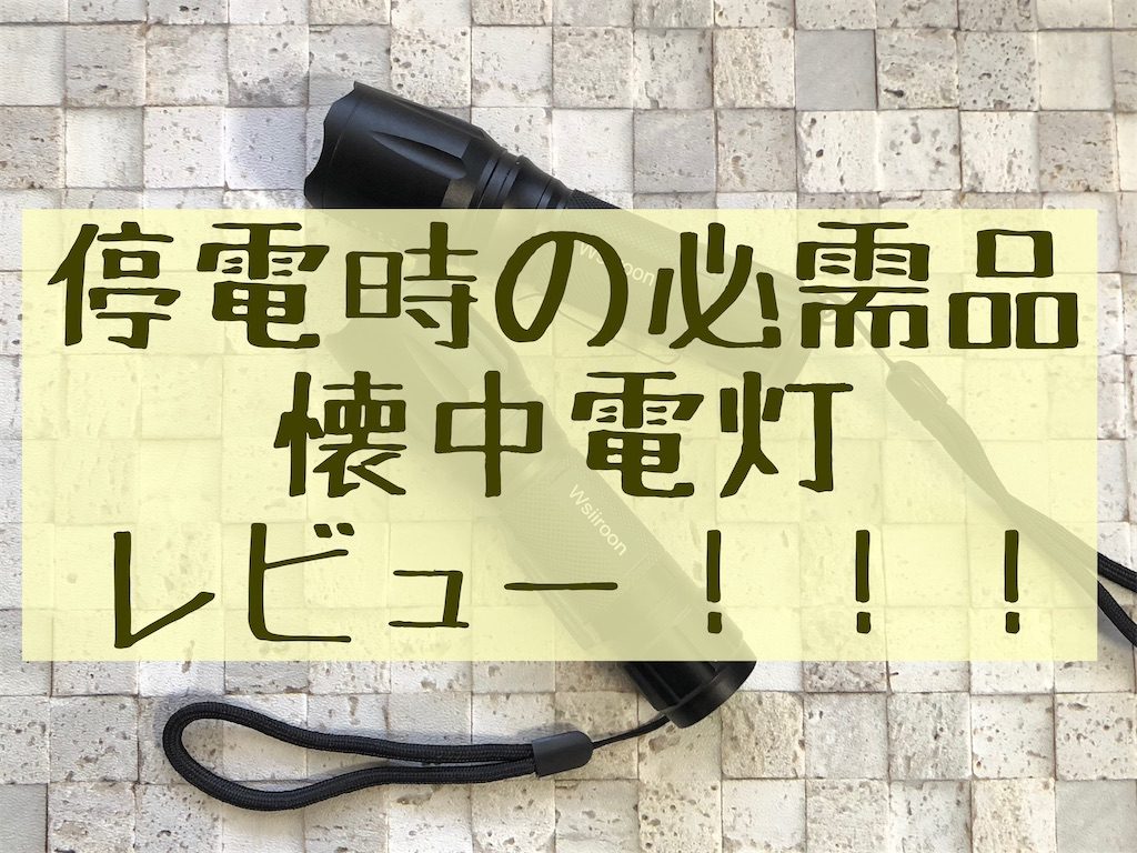 f:id:akisan01:20210125082826j:image