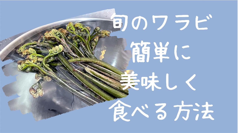 f:id:akisan01:20210523142541p:image