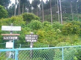 f:id:akisan0413:20070624163514j:image