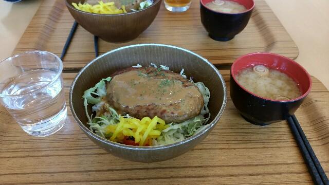f:id:akisetsura_master:20161217225831j:image