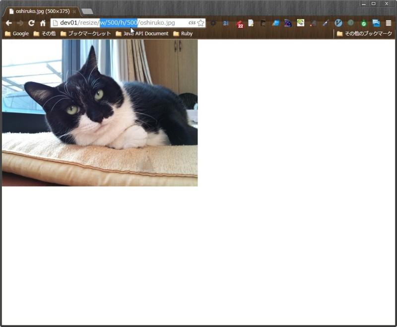 f:id:akishin999:20130615092825j:image:w360