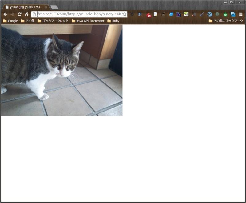 f:id:akishin999:20130617101728j:image:w360