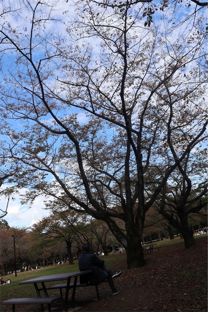 f:id:akishochan:20181104115158j:image