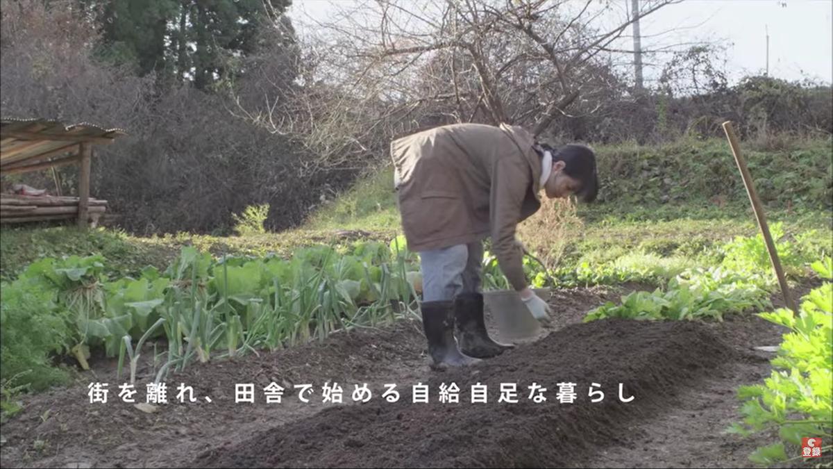 f:id:akishou-shumi:20200509133816p:plain