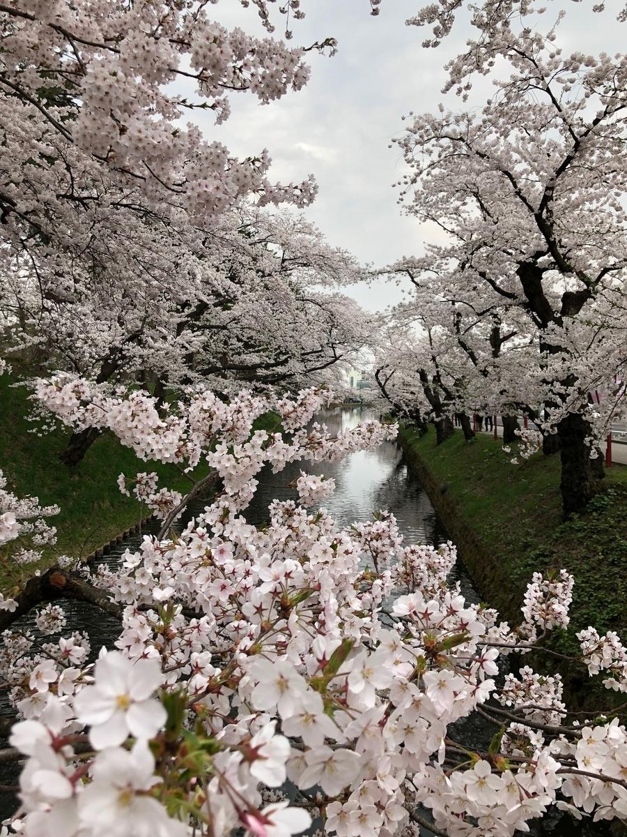 f:id:akita-ent:20190424190242j:plain