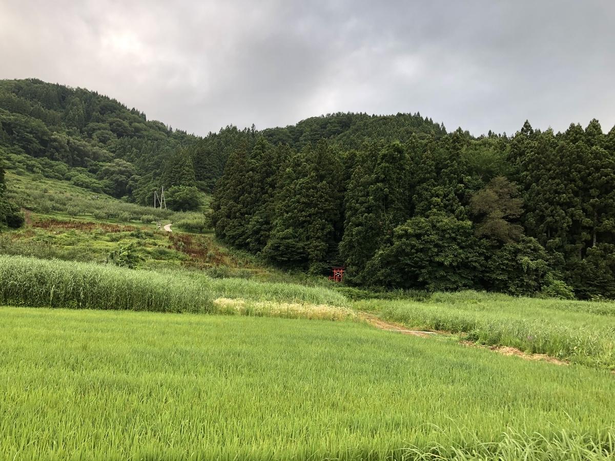 f:id:akita-ent:20190728094131j:plain