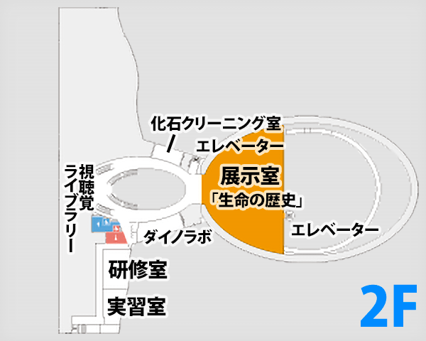 f:id:akita-inakagurashi:20200329202218p:plain
