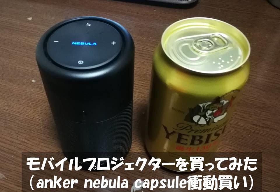 f:id:akita-inakagurashi:20210102202445j:plain