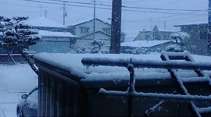 f:id:akita319:20100109072541j:image