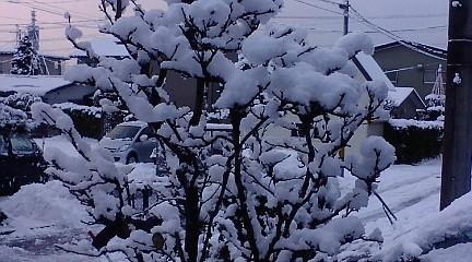 f:id:akita319:20101227071503j:image