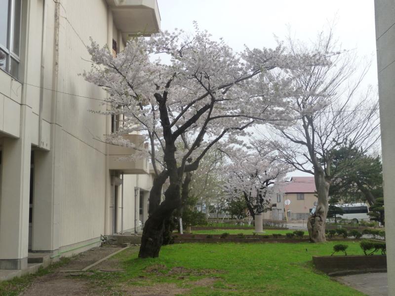f:id:akita319:20140923060751j:image