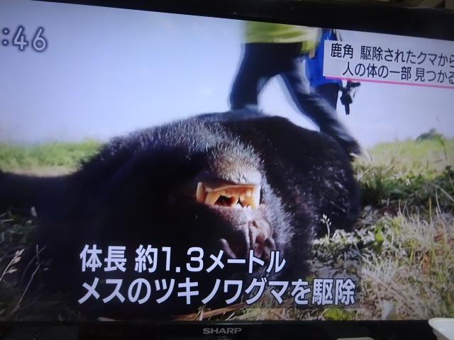 f:id:akita319:20160613214423j:image