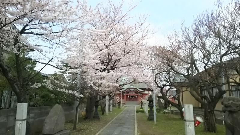 f:id:akita319:20170420202245j:image