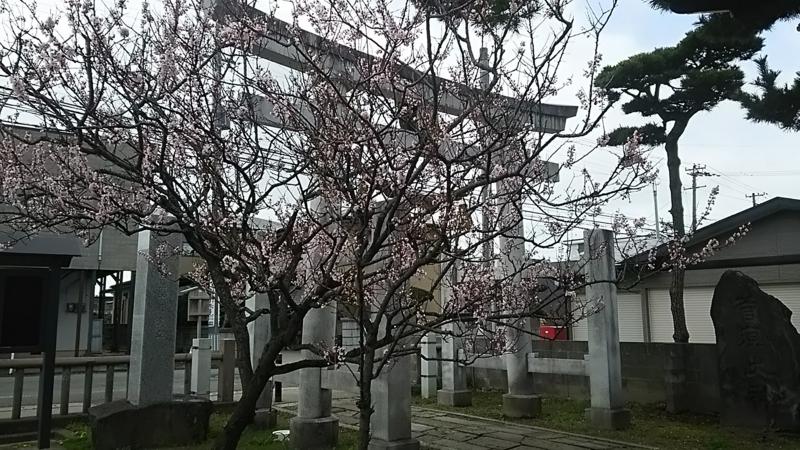 f:id:akita319:20170420202247j:image