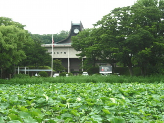 f:id:akitaculture:20120614175700j:image