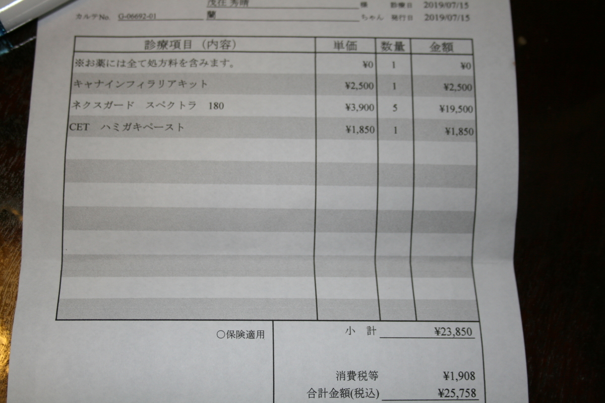 f:id:akitainuran:20190724220457j:plain
