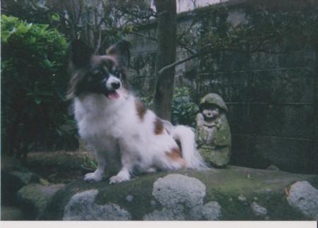 f:id:akito0526:20120511194258j:image