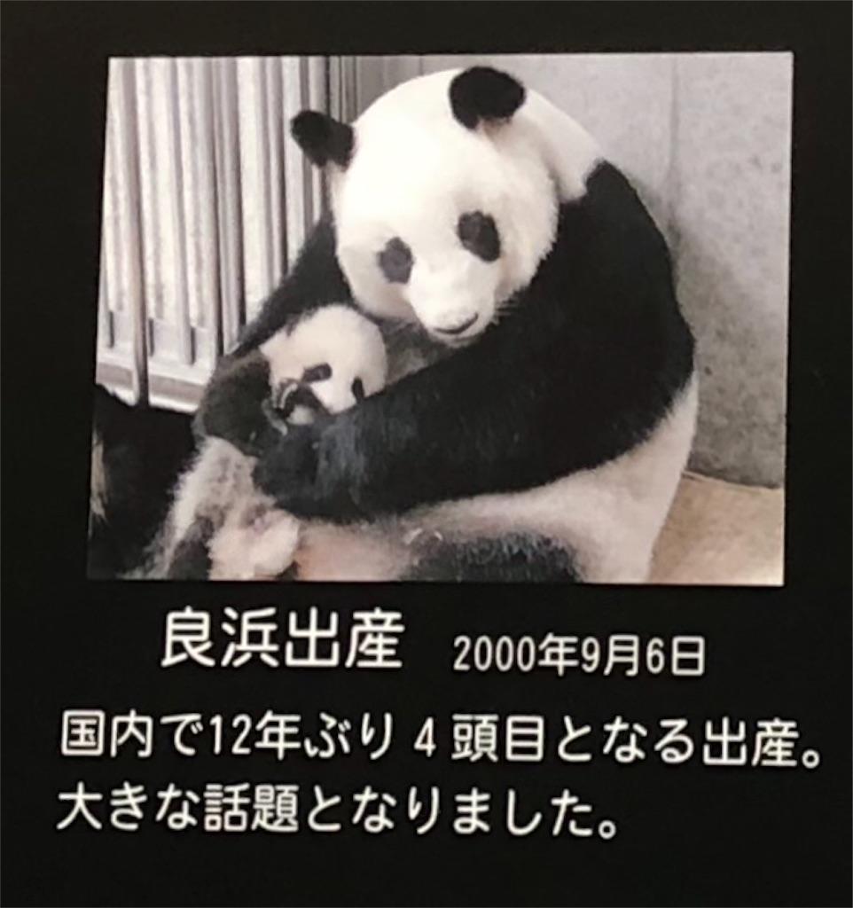 f:id:akito825:20180724140248j:image