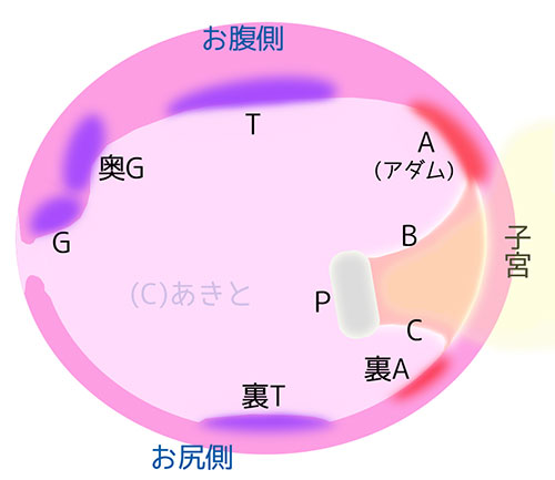 f:id:akito_ppp:20170325050615j:plain