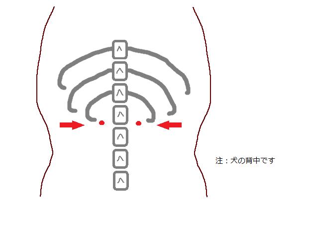 f:id:akittojuui:20181109200637p:plain