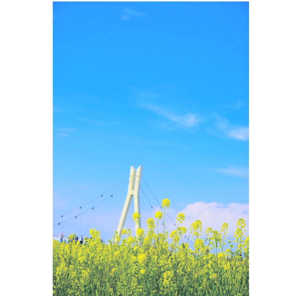 f:id:akiume926:20170406123429j:image