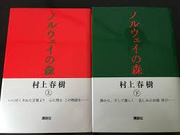 f:id:akiya-takashi:20190203063015j:plain