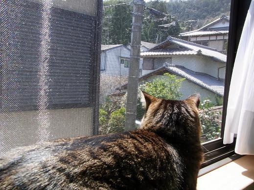 f:id:akiyochan15:20100404134722j:image
