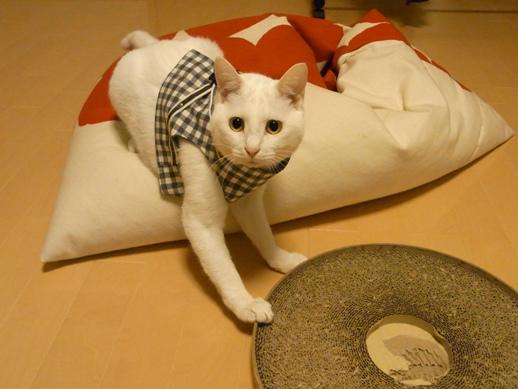 f:id:akiyochan15:20110426210415j:image