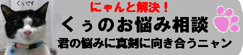 f:id:akiyochan15:20110901024547j:image