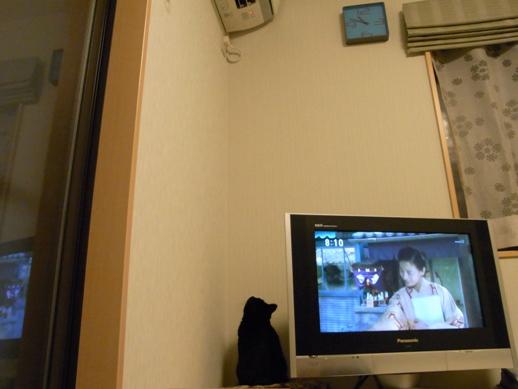 f:id:akiyochan15:20111122231616j:image