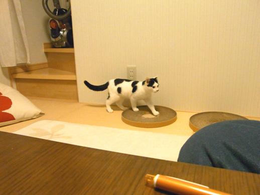 f:id:akiyochan15:20111127215202j:image