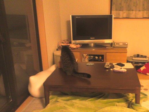 f:id:akiyochan15:20111213205930j:image